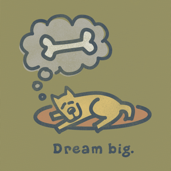 Life is Good Dream Big